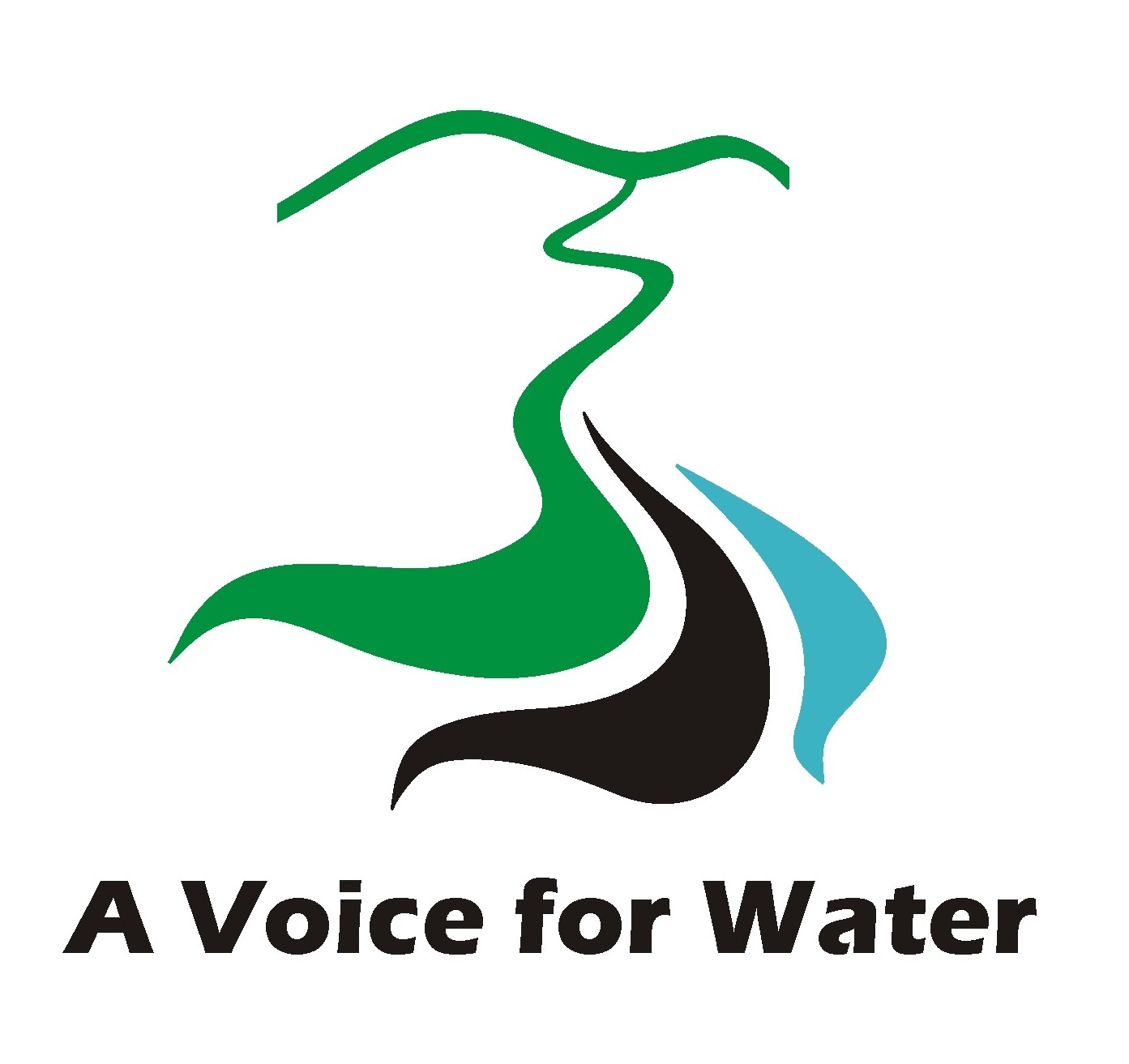 rivers a voice for water